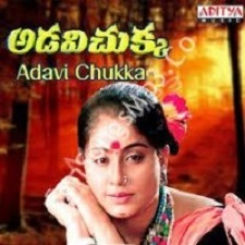 Adavi Chukka songs download