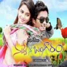 Nuvve Naa Bangaram naa songs