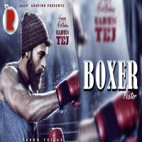 Boxer songs download
