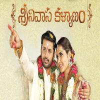 Srinivasa Kalyanam Nithin Movie Poster