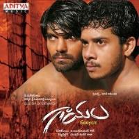 Gaayam Movie Poster