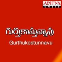 Gurthulkosthunnavu Movie Poster naa songs