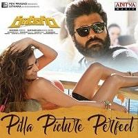Pilla Picture Perfect Poster