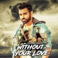 Without Your Love Telugu Poster